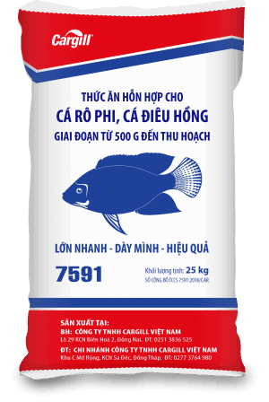 Thức ăn HH cao cấp cho cá Rô phi và cá Điêu Hồng 7591